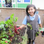 Our school gardeners - hard at work!